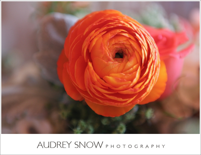 botanicals-on-the-gulf-florida-wedding-audrey-snow-photography-mediterra-flowers-detail-orange
